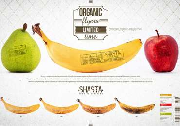 Shasta: Organic Flyers