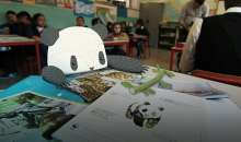 WWF: Pets4Pets project – Scheda
