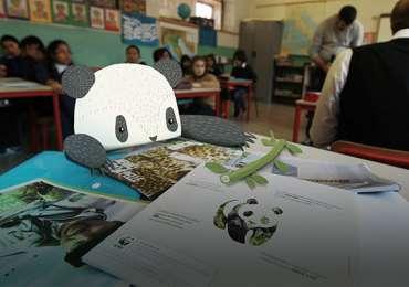 WWF: Pets4Pets project